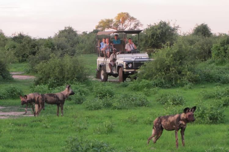 Game Drive at Imbabala Zambezi Lodge