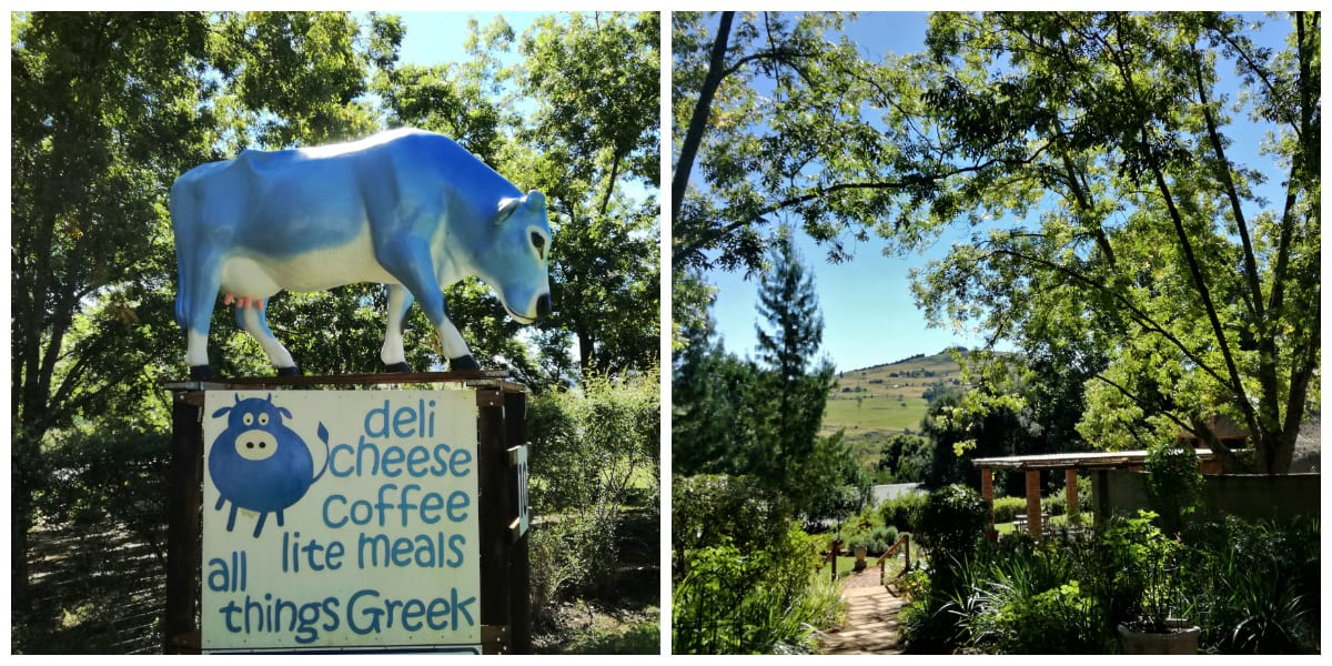 Entrance and Garden to the Blue Cow Deli
