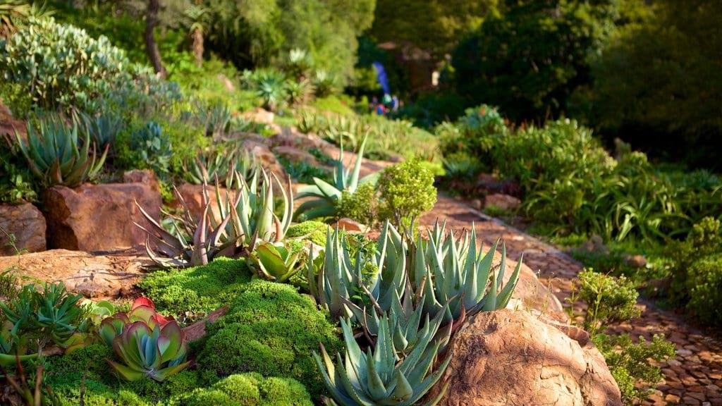Indigenous Gardens at Walter Sisulu Botanical Gardens